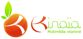 Kinaia, agence web et multim&eacute;dia vitamin&eacute;e