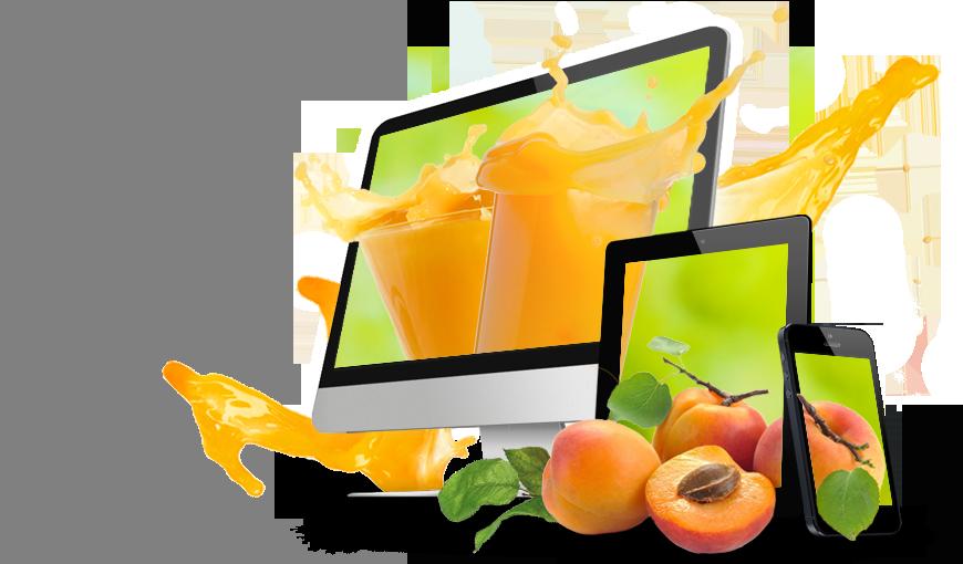 Agence Web vitaminée à Nantes